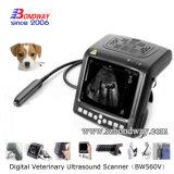 Scanner vétérinaire d'ultrason d'instrument de produits vétérinaires
