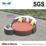 Sofá do Rattan da mobília do jardim/mobília do Rattan (ES-OL112)