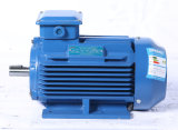 Электрический двигатель высокой эффективности с Ce