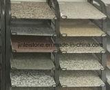 Granito della Bahia del caffè per il rivestimento della parete delle mattonelle di pavimento/controsoffitto della cucina