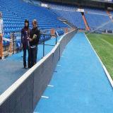 De hoge Volledige Kleur die van de Helderheid het LEIDENE Scherm van de Vertoning voor het Stadion van de Voetbal met SMD Van uitstekende kwaliteit P6, P8, P10 adverteert