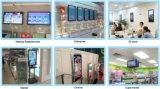 LCD Display/P7.62 Seven Colors forty-five Line LED Screen Display/LED Light