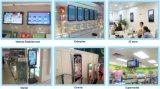 Einzelne Zeile Bildschirmanzeige der Farben-P7.62 sieben des LED-Bildschirm-Display/LED Light/LCD