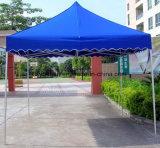 10X10FT gevouwen Tent voor Tentoonstelling 2016