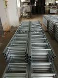 Galvanisierte runde GleitschutzSprosse-Stahlbaugerüst-Strichleiter mit klassischem Entwurf