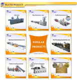 PP PE PVC 목제 플라스틱 합성물 WPC 단면도 기계 압출기
