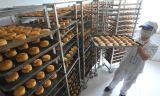 Horno rotatorio de la panadería grande de la capacidad de la fábrica de China con la construcción racional