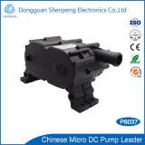 Alta pompa di circolazione di raffreddamento di categoria alimentare della macchina e delle attrezzature mediche di CNC della pompa della macchina del refrigeratore di flusso di 12V 24V P6037