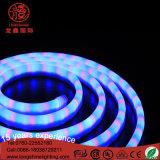 Neonlicht der Qualitäts-LED für Dekoration