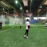 Costruzione d'acciaio del campo da pallacanestro dell'interno prefabbricato con il basso costo