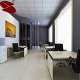 Fabrik-Preis-Ausgangsdach-dekorative Aluminiumblech-Decke