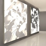 Einseitiger heller Kasten-Charisma-Gewebe Frameless LED heller Aluminiumkasten
