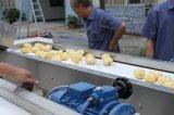 Pommes frites automatiques industrielles de pommes chips faisant les machines de développement