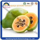Papaya-Startwert- für Zufallsgeneratorauszug des Fabrik-heißer Verkaufs-100% natürlicher