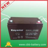 Online koopt de Kleinhandels12V 100ah UPS AGM van Alibaba Batterij Chinese Producten