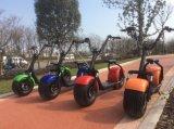 RoHS 2017 et scooter électrique de Citycoco de deux roues de nouveaux produits de certificat de la CEE grand
