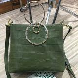 Zakken van de Schouder van het Leer van de Handtassen van de ontwerper de Echte voor Vrouwen Emg4590