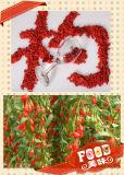 Mispel Gesundheit Obst Goji Pflanze