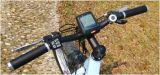 9つの速度Deraileurの中国Eのサイクルのバイクの軽量の電気バイク