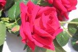 Fiori falsi rossi della Rosa dei fiori artificiali per la decorazione domestica della casa di cerimonia nuziale