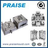 Moldeo por inyección plástico de la alta precisión (ISO9001)