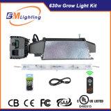 630W CMH Grow Light Kit Iluminação de Certificação UL de Espectro Completo para plantas hidropónicas internas de estufa / jardim crescendo