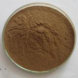 La pérdida de peso de hoja de loto Extracto de nuciferina 2% -98%