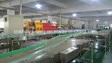 Turn - Key Carbonate Drinks Producton Line