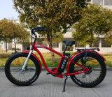 Bicicleta eléctrica para el crucero de la playa