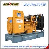 10kw/13kVA Cchp 시스템을%s 가진 전기 Biogas 발전기