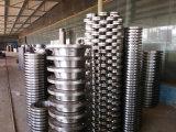 Flens de van uitstekende kwaliteit van de Plaat van het Roestvrij staal