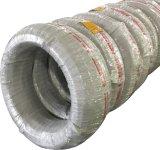 AISI1022 Ak Gmq Spheroidized recuit pour les vis Drilling d'individu