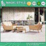 حديقة أريكة مع وسادة أريكة خارجيّة مع طباعة ساق
