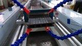 Linha de produção plástica de madeira da placa da porta do PVC