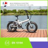 큰 힘 고속 뚱뚱한 타이어 4.0 눈 바닷가 전기 Foldable 자전거