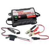 自動電池の浮遊物の充電器