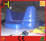 da casa inflável do salto do PVC de 0.55mm casas grandes do salto para a venda