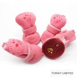 Chaussures de corail de crabot de suède de velours d'usure de pied d'animal familier de l'hiver