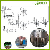 새로운 디자인 적출 스테비아 장비 임계초과 유동성 이산화탄소 적출 기계