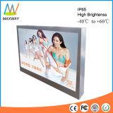 49 polegadas IP65 Waterproof o sinal do anúncio ao ar livre da montagem da parede (MW-491OB)