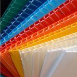 중국은 고품질을%s 가진 PP에 의하여 주름을 잡은 플라스틱 장을 착색했다