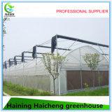Горячая гальванизированная дом тоннеля зеленая