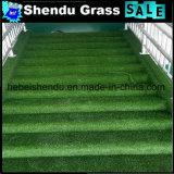 人工的な草を通路のための支持するSBRの乳液25mm
