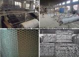Kurbelgehäuse-Belüftung beschichtete galvanisierte Geflügel-Filetarbeit