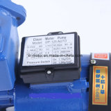 Gp125 Self-Priming Rand Elektrische Pomp van het Water