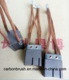 Recherche Métal Graphite Carbon Brush pour Niehoff machine