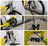 Off Road 250W Cheap Price Electric Bike