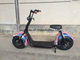 12か月の品質の保証が付いている1000Wセリウムの承認浜のスクーター