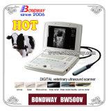 Bovine, Equine, Llama, etc.의 Pregnancy Imaging를 위한 Ultrasound 수의사