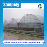 Invernadero agrícola de la película del tomate de China para la venta